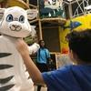 Up to 46% Off Admission at IGI Playground