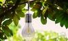 Ampoules solaires vintage