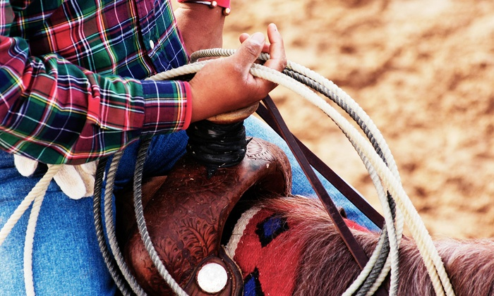 Horse Rides of Pensacola - West Pensacola: One-Hour Horseback-Riding Experience from Horse Rides of Pensacola (Half Off)