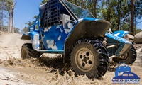 10-Minute Wild Buggy Drive: Child ($19) or Adult ($39), $10 Extra to Add 5 Mins at Wild Buggy (Up to $69 Value)