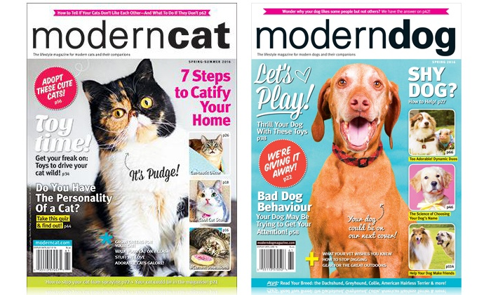 """Blue Dolphin Magazines: One-Year Subscription to """"Modern Dog"""" or Two-Year Subscription to """"Modern Cat"""" from Blue Dolphin (Up to 50% Off)"""