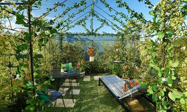 Gardening deals brisbane