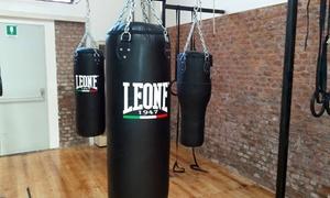 Heracles Gymnasium: Abbonamento open di 3 mesi per lezioni di pugilato alla palestra Heracles in zona Loreto (sconto 86%)