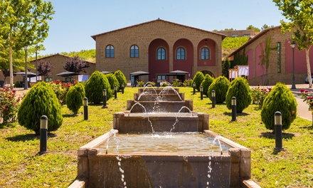 Visita de bodega con maridaje, degustación de 3 vinos y cava para 2 o 4 personas desde 11,95€ con Bodega Tierra de Cubas