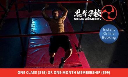 Movement and Obstacle Training: One Class ($15) or One Month Membership ($99) at Ninja Academy (Up to $200 Value)