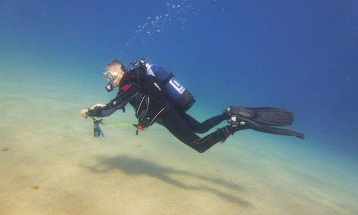 Shark Point - Più sedi: Corso di sub con lezioni teoriche, pratica in piscina e immersioni in mare (sconto fino a 88%)