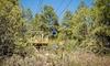 Glorieta Camps - Glorieta Camps: Ziplining Tour for Two, Four, or Six at Glorieta Camps (Up to 40% Off)