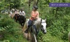 Up to 40% Off Trail Ride for Two, Four, or Six