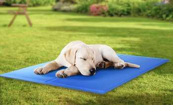 Doggy Cool Self-Cooling Pet Mat