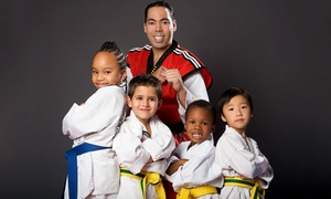 JC Taekwondo and Kickboxing Academy: 5 or 10 45- or 60-Minute Martial Arts Classes at JC Taekwondo and Kickboxing Academy (Up to 75% Off)