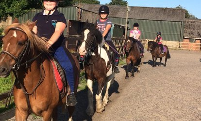 image for Group Horse Riding Lesson for One or Two Children or One or Two Adults at Croft Riding Centre (Up to 54% Off)