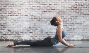 Clínica de Fisioterapia e Estética Fisio Forcio: Clínica Fisio Forcio – Taguatinga Norte: 1, 2 ou 6 meses de pilates