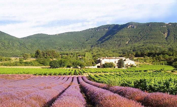 Drôme provençale : 2 nuits avec modelage et accès Spa en option aux Gîtes du Château d'Alençon pour 2 ou 4 personnes