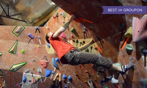 Philadelphia Rock Gyms: Introductory Rock-Climbing Class for One, Two or a Family of Up to Four at Philadelphia Rock Gyms (Up to 59% Off)