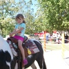 Up to 31% Off Farm Admissions at Green Meadows Petting Farm