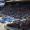 UCLA Bruins Women's Gymnastics — $9 for Meet