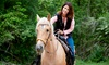 Up to 42% Off Guided Trail Ride at Warner Springs Ranch Resort