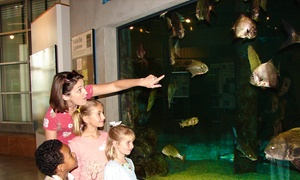 Up to 55% Off Admission at Dauphin Island Sea Lab at Dauphin Island Sea Lab, plus 6.0% Cash Back from Ebates.