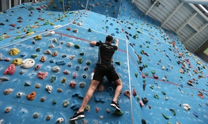 Trinity College Sports Centre: Climbing Taster Session for One or Two at Trinity College Sports Centre (50% Off)