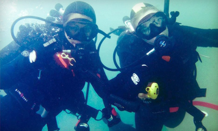 Pacific Wilderness - Central San Pedro: Four-Day PADI Open-Water Scuba Certification on Catalina Island or in San Pedro from Pacific Wilderness (Up to 53% Off)