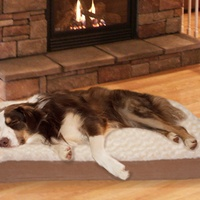 Deals on Deluxe Ultra-Plush Orthopedic Pet Bed Small