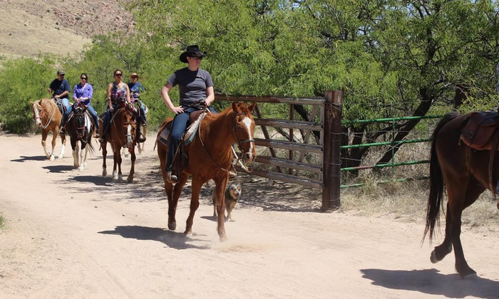 Double R Guest Ranch at Grapevine Canyon - Pearce: 60- or 90-Minute Horseback Trail Ride for Two at Double R Guest Ranch at Grapevine Canyon (Up to 39% Off)