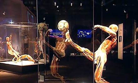 Body Worlds Vital At Rhode Island Convention Center In