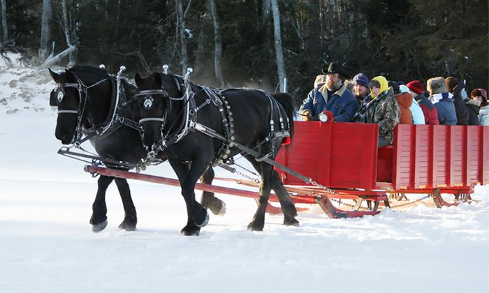 Cornerstone Ranch - Princeton: Group Horse-Drawn Sleigh or Wagon Ride for Two or Four or Private Ride for Four at Cornerstone Ranch (Up to 54% Off)