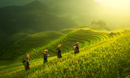 ✈ Singapore and Bali: 10 Nights at a Choice of Hotels with Flights*