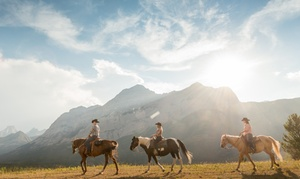 Boundary Ranch: One- or Two-Hour Trail Ride for One or Two People at Boundary Ranch (Up to 41% Off)
