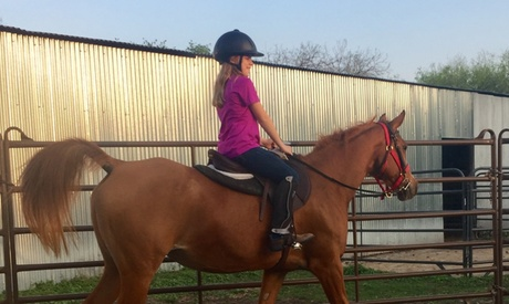 One or Two 1.5 Hour Horseback Riding Lessons at Moonshine Stables and Riding Academy (Up to 35% Off) 10d1d185-7f8d-49f8-95b8-03be84239dd9