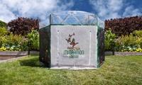 Backyard Butterfly Garden Playhouses