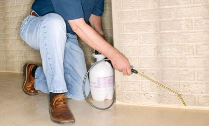 image for One or Four Indoor-Outdoor Pest-Spray Treatments from Around the Clock Pest Control (Up to 72% Off)