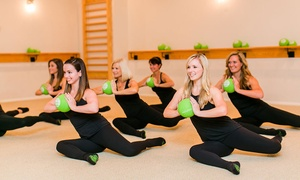 Up to 65% Off Barre Classes at Barre Evolution at Barre Evolution, plus 6.0% Cash Back from Ebates.
