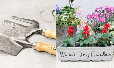 Personalised Gardening Set or Wooden Trough: One ($12) or Two ($22) (Dont Pay up to $61.43)