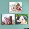 """Up to 89% Off 16x20"""" Personalized Premium Thick Wrap Canvases"""