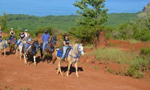 Horseback Riding Tour for One, Two, or Four at EO Waianae Tours (Up to 50% Off)