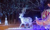 Up to 50% Off Admission to Winter Wonders Drive-Thru