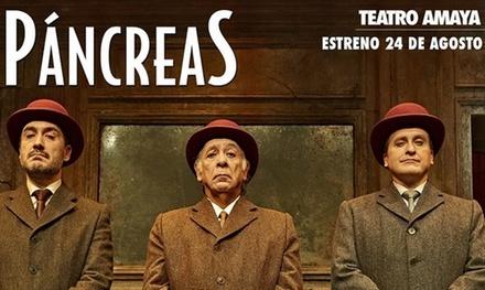 Entrada para 'Páncreas' de Patxo Telleria el 1 de noviembre, 5 y 6 de diciembre desde 16 € en el Teatro Amaya