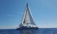Journée en catamaran avec randonnée palmée ou plongée sous-marine pour 1 personne dès 45 € avec ATAO Plongée