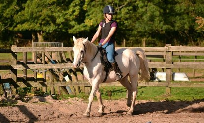 image for 45-Minute Escorted Horse Ride for Up to Six at Kingsmead Equestrian Centre (Up to 36% Off)