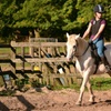Individual or Group Horse Riding