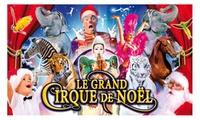 1 place en tribune dhonneur pour assister à la représentation du Grand Cirque de Noël  à 10 € à Nîmes ou à Montpellier