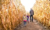 Up to 41% Off at Curfman's Massive Corn Maze