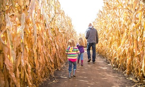 Up to 47% Off Fall Activities and Hot Dog Meal at P Bar Farms at P Bar Farms, plus 6.0% Cash Back from Ebates.