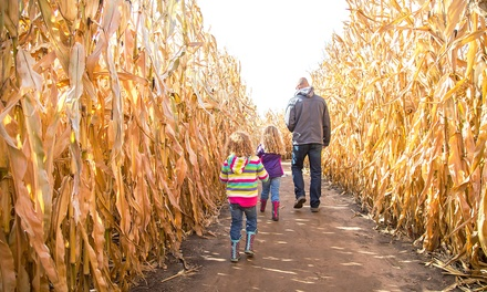 $28 for Admission to Hayride and Corn Maze for Up to Four at Westhaven Farm ($42 Value)