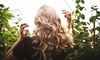 Up to 49% Off Hair Services at Suite Beauty by Ilona
