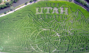 Cross E Ranch: Corn Maze and Fall Fest Admission for Two or Four at Cross E Ranch (Up to 43% Off)