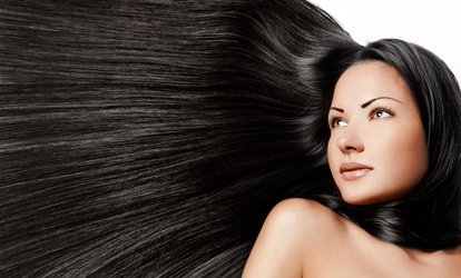 $23 for $45 Worth of Services — The Elite Salon