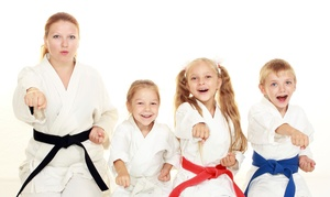 Fighting Brothers Karate: Up to 76% Off Karate Classes at Fighting Brothers Karate